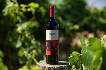 百年品牌与艺术的碰撞,堡歌家族玩出葡萄酒跨界新高度